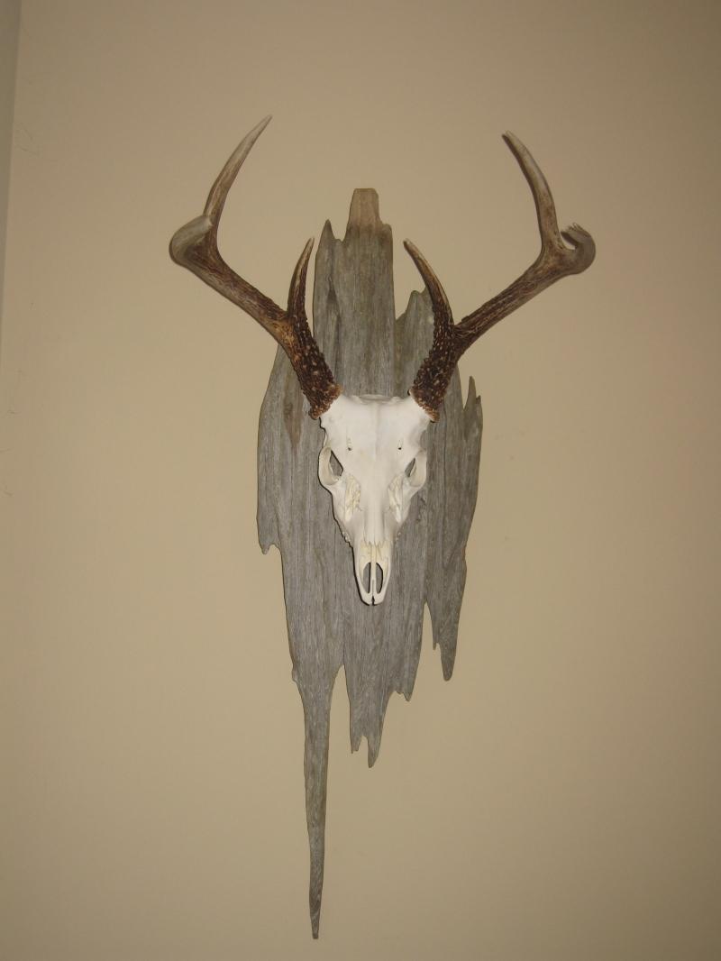 Gres Build Wooden Shed Elk Antler